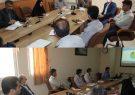 فیروزه پیشرو در طرح تحول اقتصادی از طریق افزایش بهرهوری دام سبک در استان