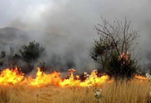 مراتع منطقه مایانسفلی، حصار و تخته مغان از بلوک اردمه در طرقبه طعمه حریق شد