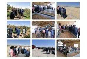 افتتاح یک واحد ترمینال ضبط و فرآوری پسته در شهر جنگل رشتخوار