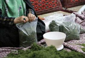 پروژه صندوق اعتبارات خرد زنان روستایی در خراسان رضوی ۲۰ساله شد