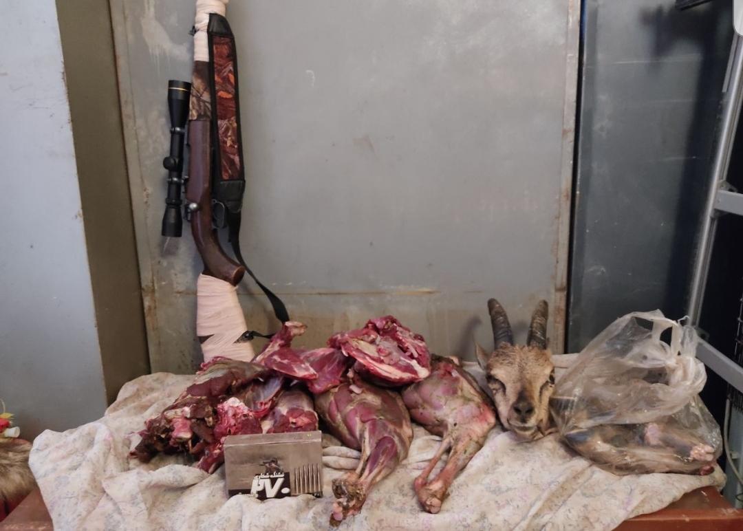 دستگیری یک شکارچی غیر مجاز در کلات